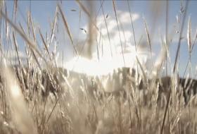 Music Video: Hipernuit Format: 24p HDTV Role: Focus Puller